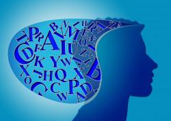 Цикл практических занятий. Анатомия человеческого разума.